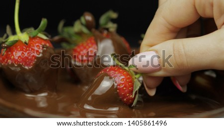 Hand dipping ripe juicy strawberry in melted dark chocolate. Fresh berries sweet dessert food background. Close up #1405861496