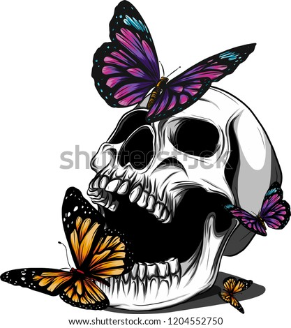 Hand drawing a bone skeleton, anatomical drawing of pelvic bone man, print for Halloween,butterflies fly, skull