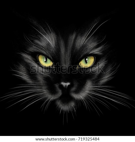 Stock Photo hand-drawing portrait of a black cat on a black background