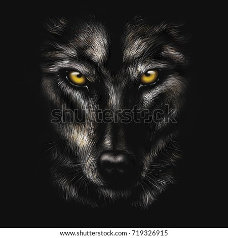 hand-drawing portrait of a black wolf on a black background