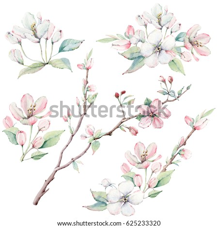 hand drawn apple tree branches...