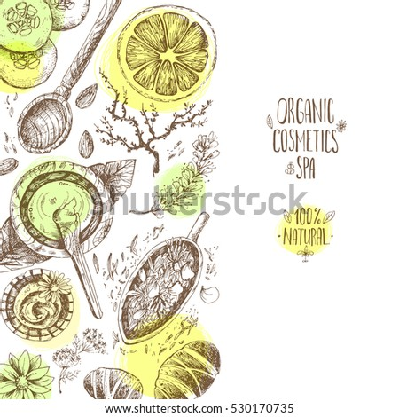 Hand drawn background, organic cosmetics, spa. Left composition. Natural herbal products, citrus, cucumber, zucchini, flower petals, chamomile, almond. Vintage engraving sketchy style.
