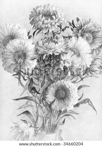 Hand-drawn bouquet of asters