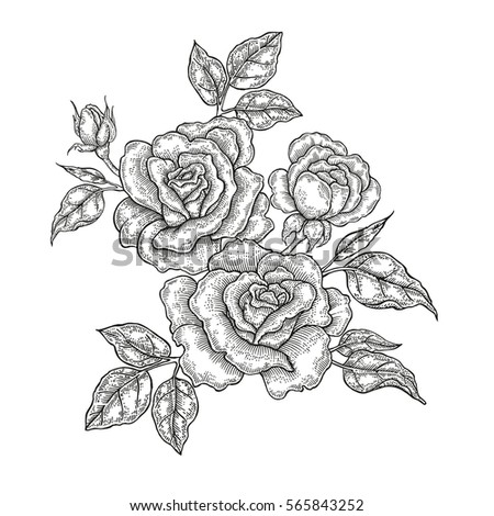 vintage floral composition rose flowers and leaves isolated on white background