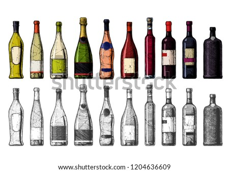 Hand drawn illustration of Wine Bottles in vintage engraved style. Color and black-and-white versions. #1204636609