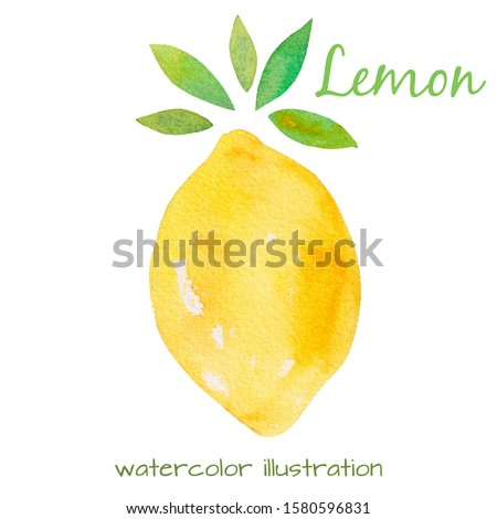Hand drawn lemon with green leaves on a white background. Healthy organic food. Tropical citrus for prints, decoration, cards, banners. Watercolor illustration