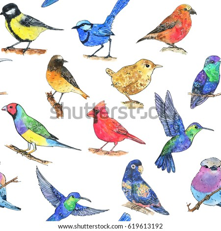 hand drawn painted seamless pattern of watercolor sketch of isolated birds on white background