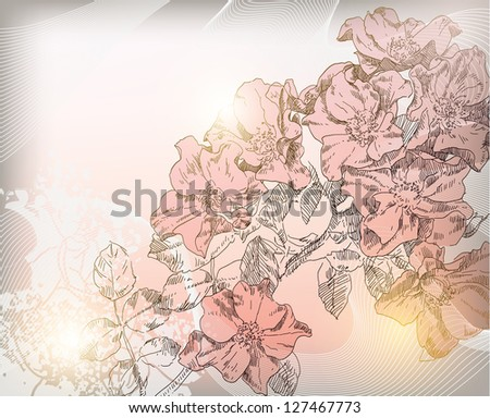 Hand drawn rose flowers - stock photo