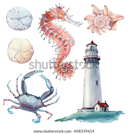 hand drawn sea clipart. There are lighthouse, seahorse, crab, shell, sand dollar here. It's perfect for card, poster, scrapbooking design.