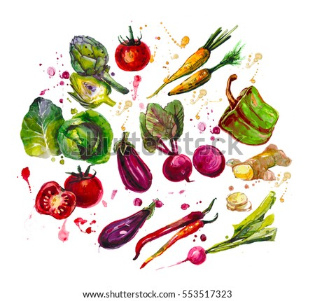 hand drawn set with  watercolor vegetables. food. cabbage, artichoke, tomatoes, carrots, peppers, beet, eggplant, ginger, zucchini, chilli, radish #553517323