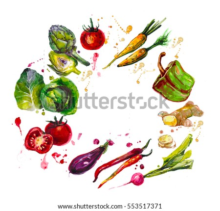hand drawn set with  watercolor vegetables. food. cabbage, artichoke, tomatoes, carrots, peppers, eggplant, ginger, chilli, radish #553517371