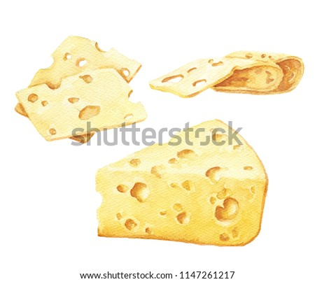 Hand drawn watercolor cheese set, isolated on white background. Food illustration.