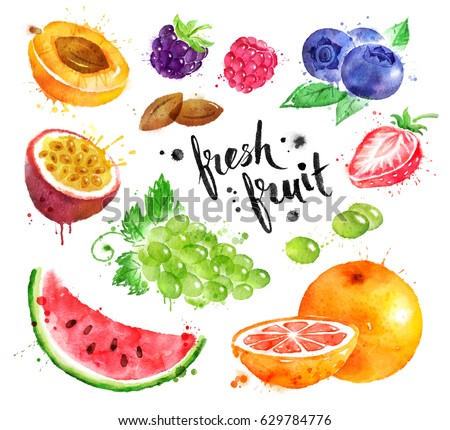Hand drawn watercolor colorful illustration set of fresh fruit and berries with paint splashes.