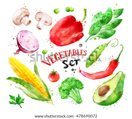 Hand drawn watercolor colorful set of vegetables with paint splashes. #478690072