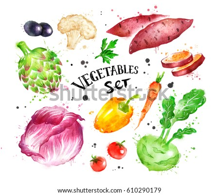 Hand drawn watercolor colorful set of vegetables with paint splashes. #610290179