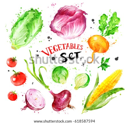 Hand drawn watercolor colorful set of vegetables with paint splashes. #618587594