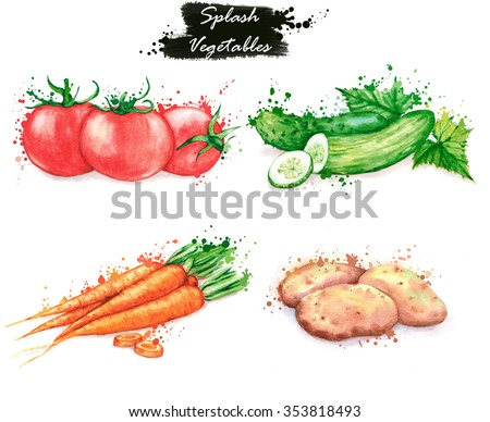 Hand-drawn watercolor food illustrations. Isolated drawings of the fresh vegetables - red tomatoes, cucumbers, carrot and potatoes. Splash style #353818493