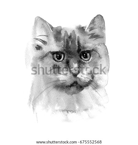 Hand drawn watercolor persian cat. Ideal for postcards, gift tags and other printed stuff. #675552568