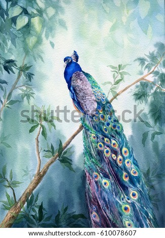 Hand drawn watercolor picture Paradise garden with the peacock