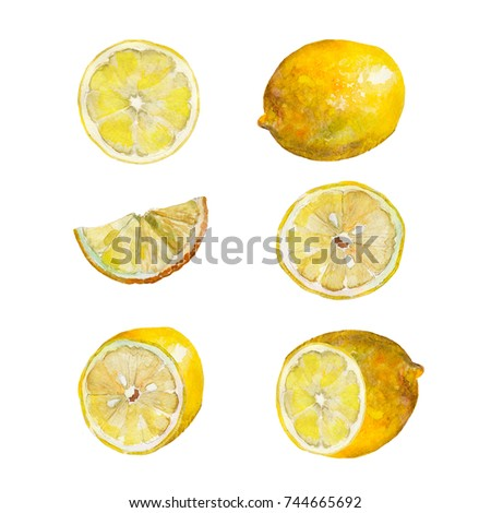 Hand drawn watercolor set. Lemon slices. Objects isolated on white background.