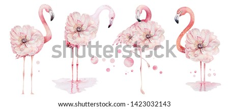 Hand drawn watercolor tropical birds set of flamingo. Exotic rose bird illustrations, jungle tree, brazil trendy. Perfect for fabric design. Aloha collection.