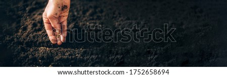 Hand growing seeds on sowing soil. Background with copy space. Agriculture, organic gardening, planting or ecology concept. Sustainable business investment. Gospel spreading. Foto stock ©