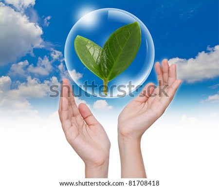 Hand hold Bubbles with green leaf inside in the sky