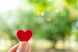 Hand hold little heart meaning feel love with green nature bokeh background.