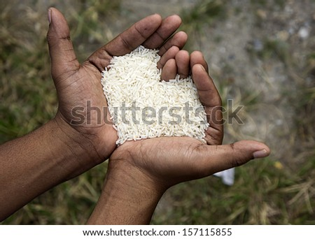 Hand hold rice in shape of love