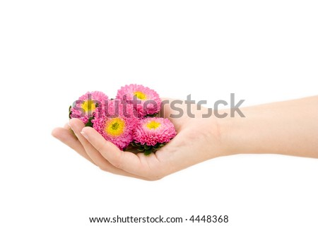 Hand holding a flowers