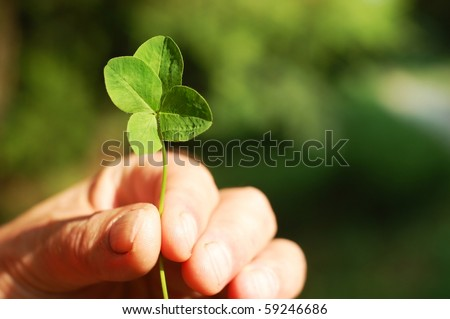 Hand holding a four leaf clover - stock photo