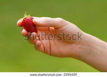 Hand holding a juicy ripe strawberry