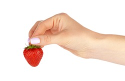 hand holding a strawberry isolated on white background. Close up.