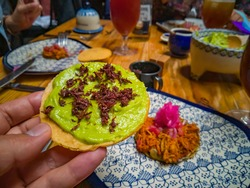 hand holding a tostada prepared with guacamole and grasshoppers on a hand painted spread plate in a traditional Mexican food restaurant