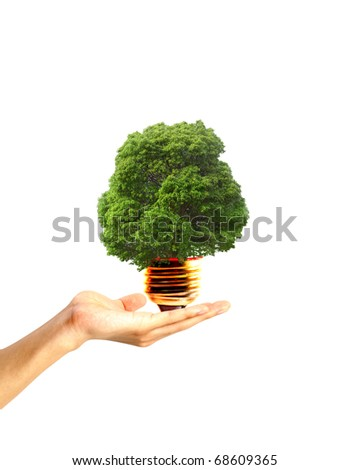 hand holding a tree in a light bulb