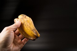 Hand holding banana peel close up. on black background with copy space.