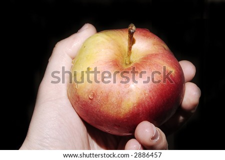 hand holding big red apple on black background