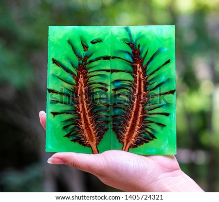 Hand holding casting epoxy resin Stabilizing pine cone abstract art blur background