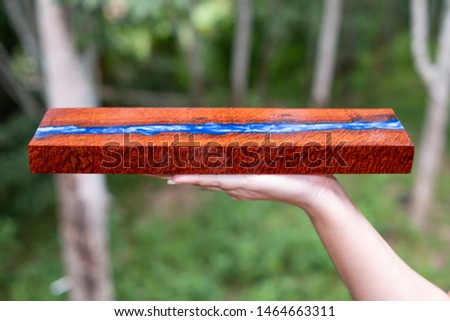 Hand holding casting resin wood has tiger stripe or curly stripe grain, wooden exotic beautiful pattern for crafts or abstract background texture #1464663311