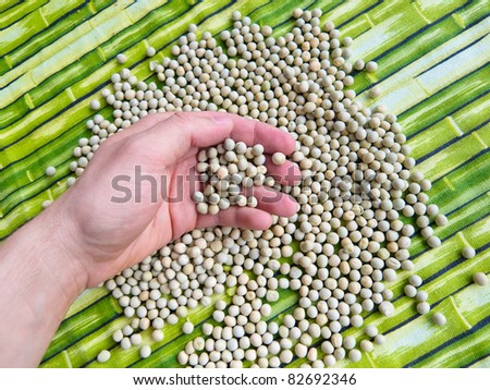 Hand holding dried peas