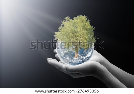 Hand holding earth , Elements of image are furnished by NASA