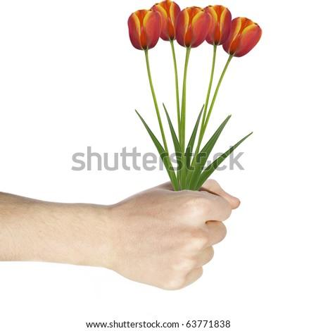 Hand Holding Flowers Stock Photo 63771838 Shutterstock