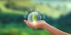 Hand holding green leaf with icons energy sources for renewable, sustainable development. Ecology concept.