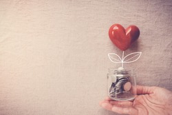 Hand holding heart plant jar growing on money coins,CSR social responsibility,donation,economic restoration post coronavirus covid-19 pandemic crisis,stimulus relief recover plan for reopen business