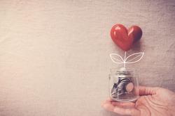 Hand holding heart plant jar growing on money coins, saving, CSR social responsibility,fundraising, donation,ngo and community care, ESG, environmental social governance concept