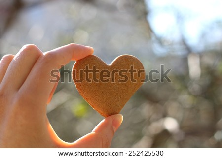 Hand holding heart-shaped gingerbread cookie.  #252425530