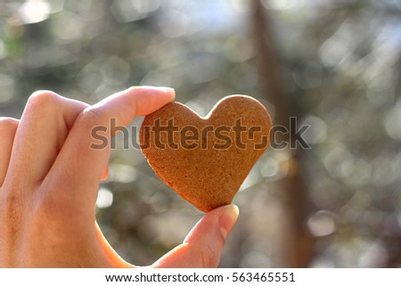 Hand holding heart-shaped gingerbread cookie. Selective focus, soft bokeh.  #563465551