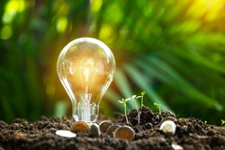 hand holding light bulb against nature, icons energy sources for renewable