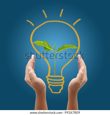 hand holding light bulb on blue background,young plant in a light bulb