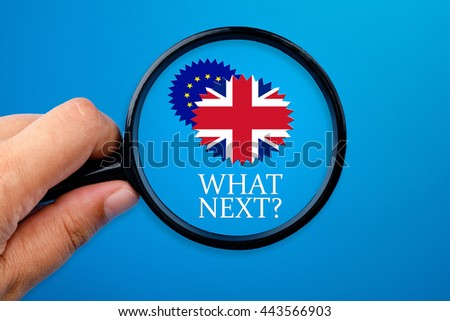 Hand holding magnifying glass over the words What Next?, Brexit conceptual.